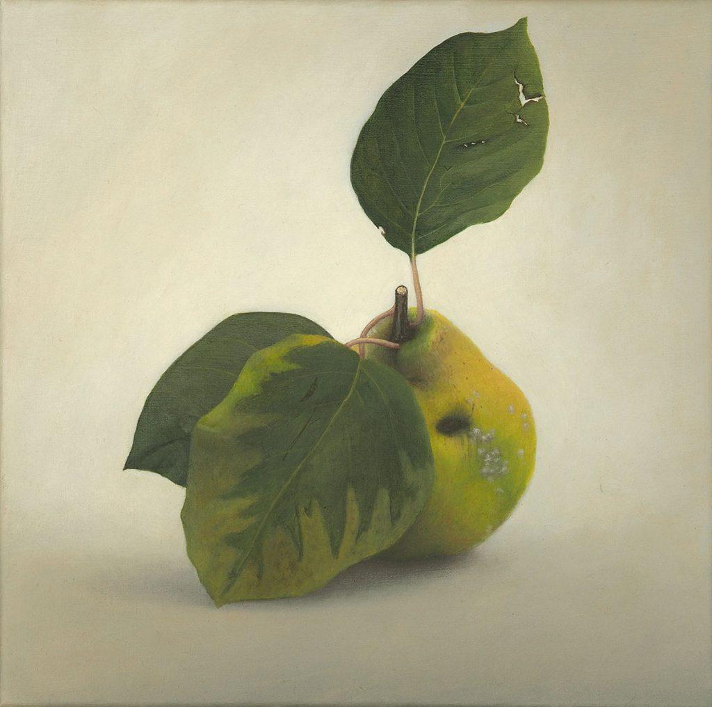 Quitte 01 Diethard Sohn 2014 Acryl auf Leinwand 30 x 30 cm (verkauft)